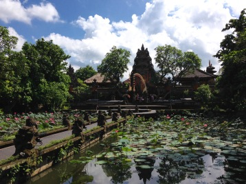 Lotus pond, Ubud